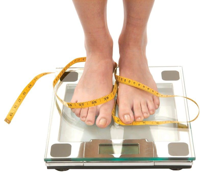 продукты сжигающие жиры для быстрого похудения список