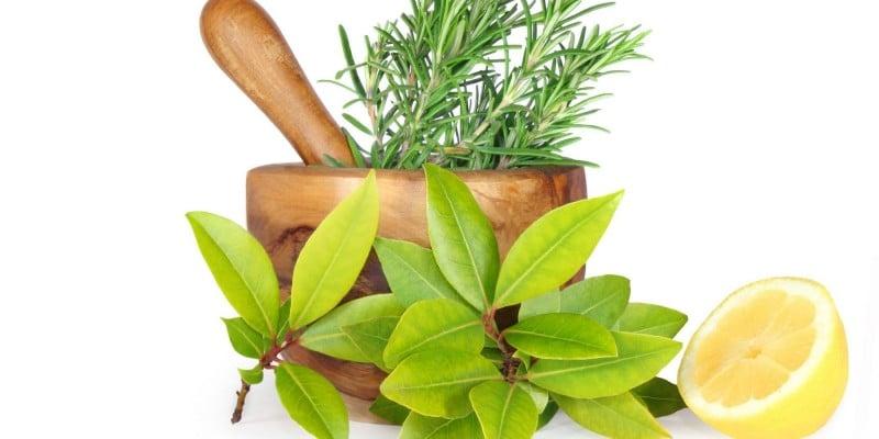 продукты гербалайф для похудения описание