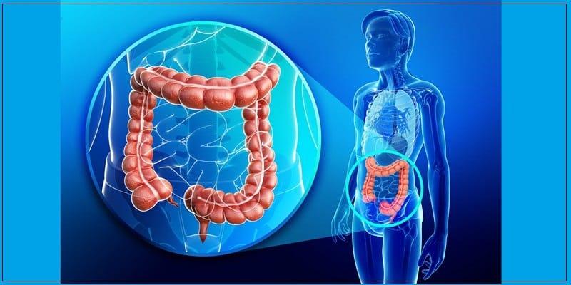 Эффективные советы как похудеть без диет и голода