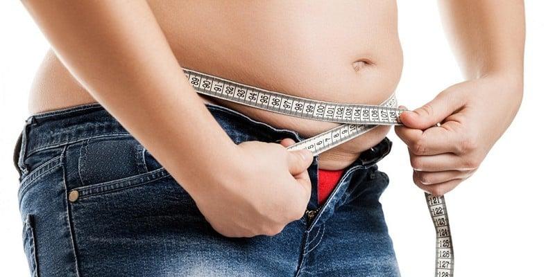 организм запасает жир