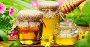 Очищение организма медом