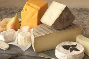 Можно ли потолстеть от сыра