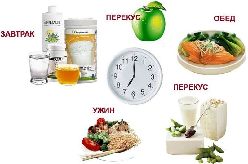 белковая диета меню на каждый день