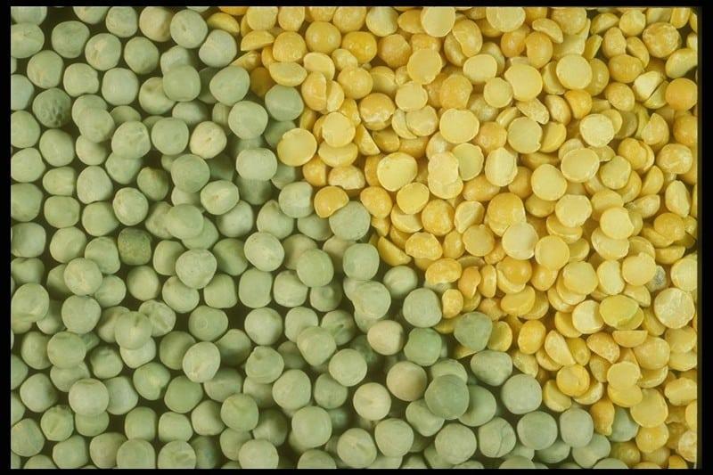 гороховая каша калорийность на 100 грамм