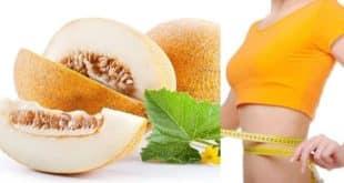 Дыня в диетическом питании